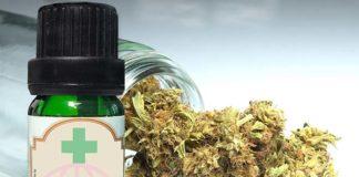 Olejek CBD Sequoyalife robi furorę na polskim rynku. Czy jest legalny?